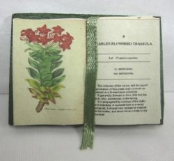 Open Book, Botanical Specimens