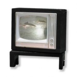 Twelve Volt Swivel Television
