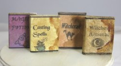 Witch and Wizard Magic Book Set
