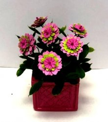 Pink with Yellow Dahlias in Square Pot