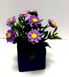 Purple Zinnias in Square Pot