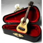 Acoustic Guitar in Case