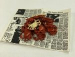Crabs on Newspaper