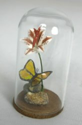Butterfly Under a Glass Dome