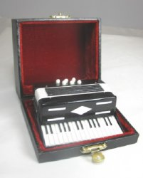 Black and White Accordion with Case