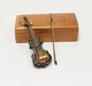 Violin and Bow in Wooden Case