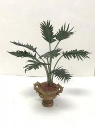 Palm Plant in Urn